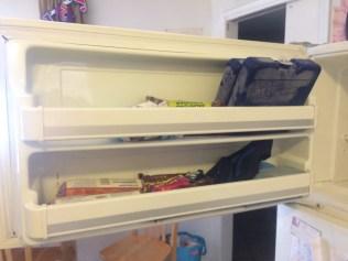 Freezer Door After