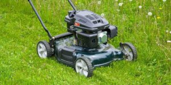 Petrol-powered grass Strimmers