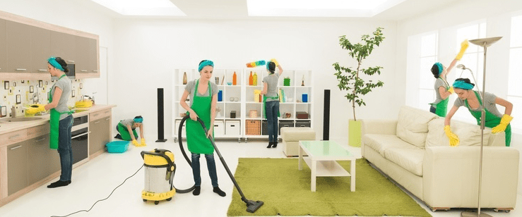 cleaning services house cleaner