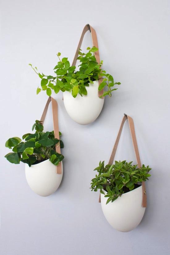 Hanging Plants Indoor: Ergonomic, Elegant, and Stylish ... on Hanging Plant Pots Indoor  id=43154
