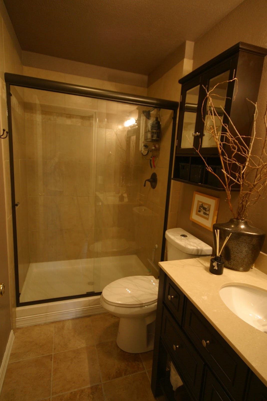Small Bathroom Remodels: Maximal Outlook in Minimal Space ... on Small Bathroom Ideas With Shower Only id=28546