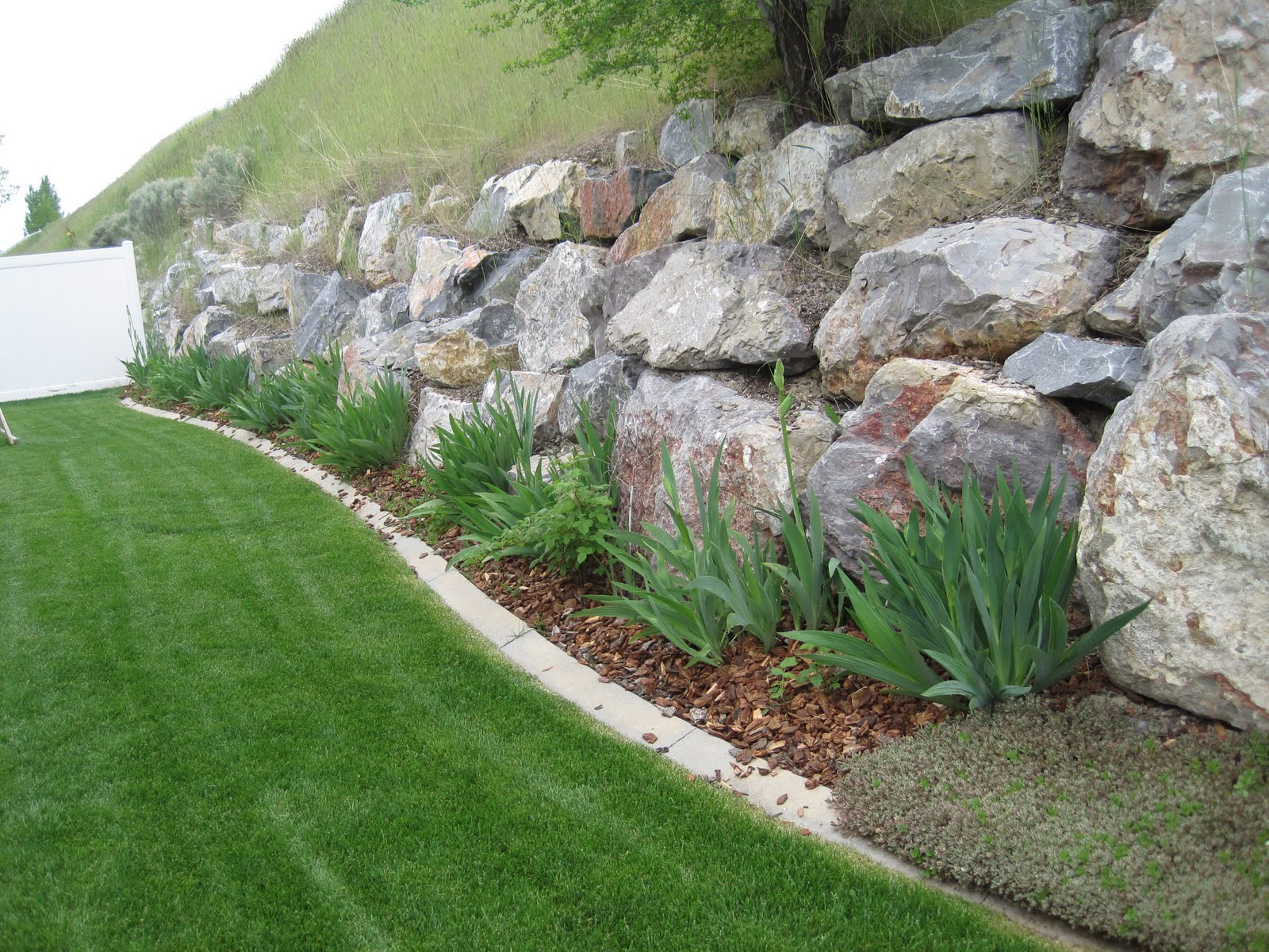 Natural Large Rocks For Landscaping | HomesFeed on Rocks In Backyard  id=18603
