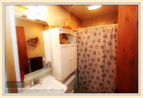 The more interesting features of this home for sale in New Milford CT includes a basement with washer and dryer.