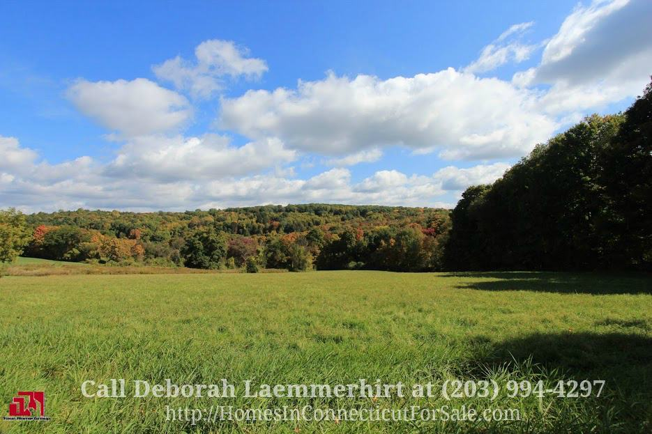 This rare opportunity of owning a wonderful equestrian property for sale in Bridgewater CT is now available to all investors, developer, or someone looking for a prime piece of land.