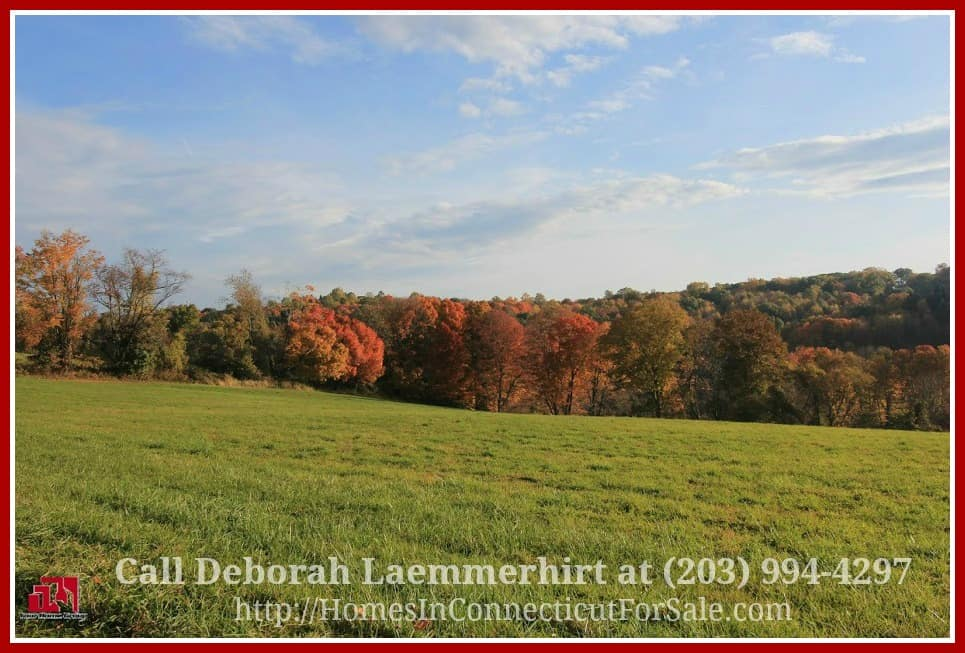This luxury equestrian property for sale in Bridgewater CT is perfect for a luxurious country home, a modern stable and a farm.