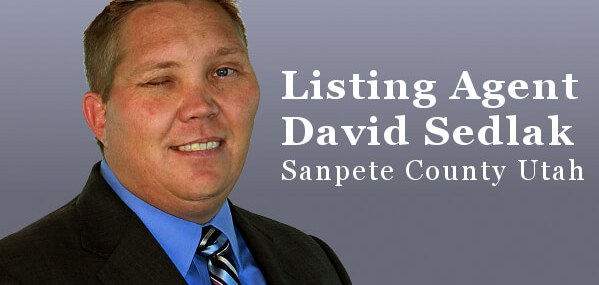 David Sedlak seller's listing agent for Sanpete County utah