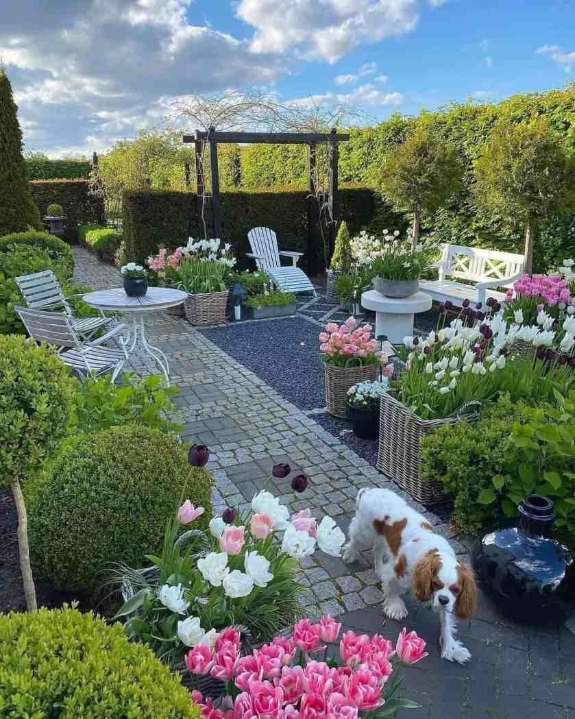 15 Ideas for Landscaping your Yard Without Grass