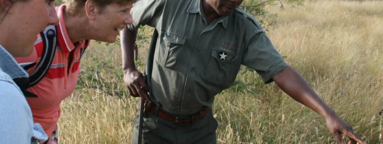 Bush Walk South Africa