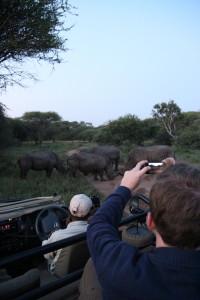 Op safari in Zuid-Afrika