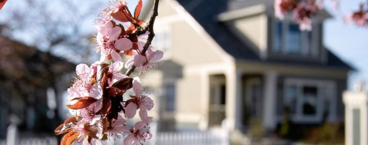 Energy guidance for homeowners