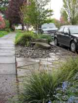 Beautiful front yard rock garden landscaping ideas (50)