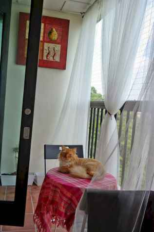Cozy small apartment balcony decorating ideas (6)