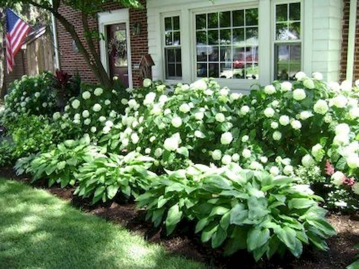 Simple and beautiful front yard landscaping ideas (24)