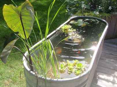 22 awesome backyard ponds and water garden landscaping ideas