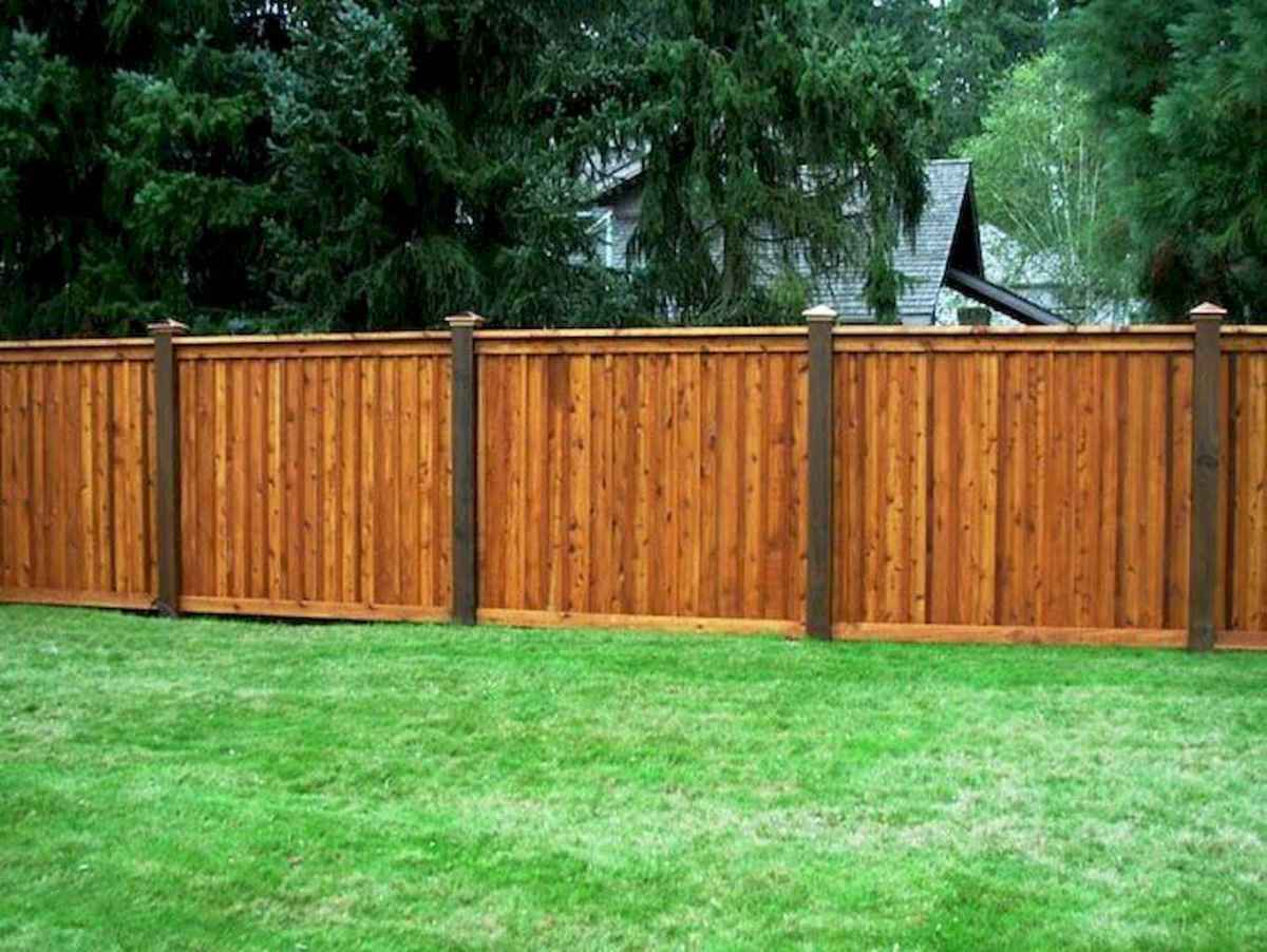 35 easy cheap backyard privacy fence design ideas