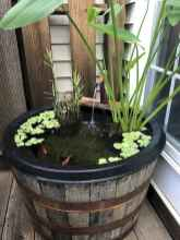 72 awesome backyard ponds and water garden landscaping ideas