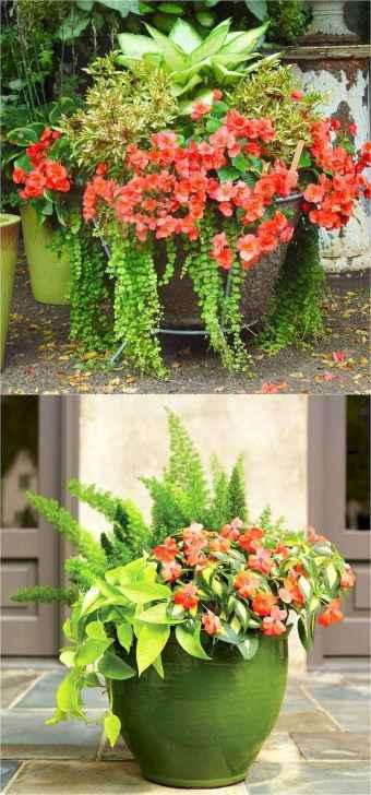 04 fabulous summer container garden flowers ideas