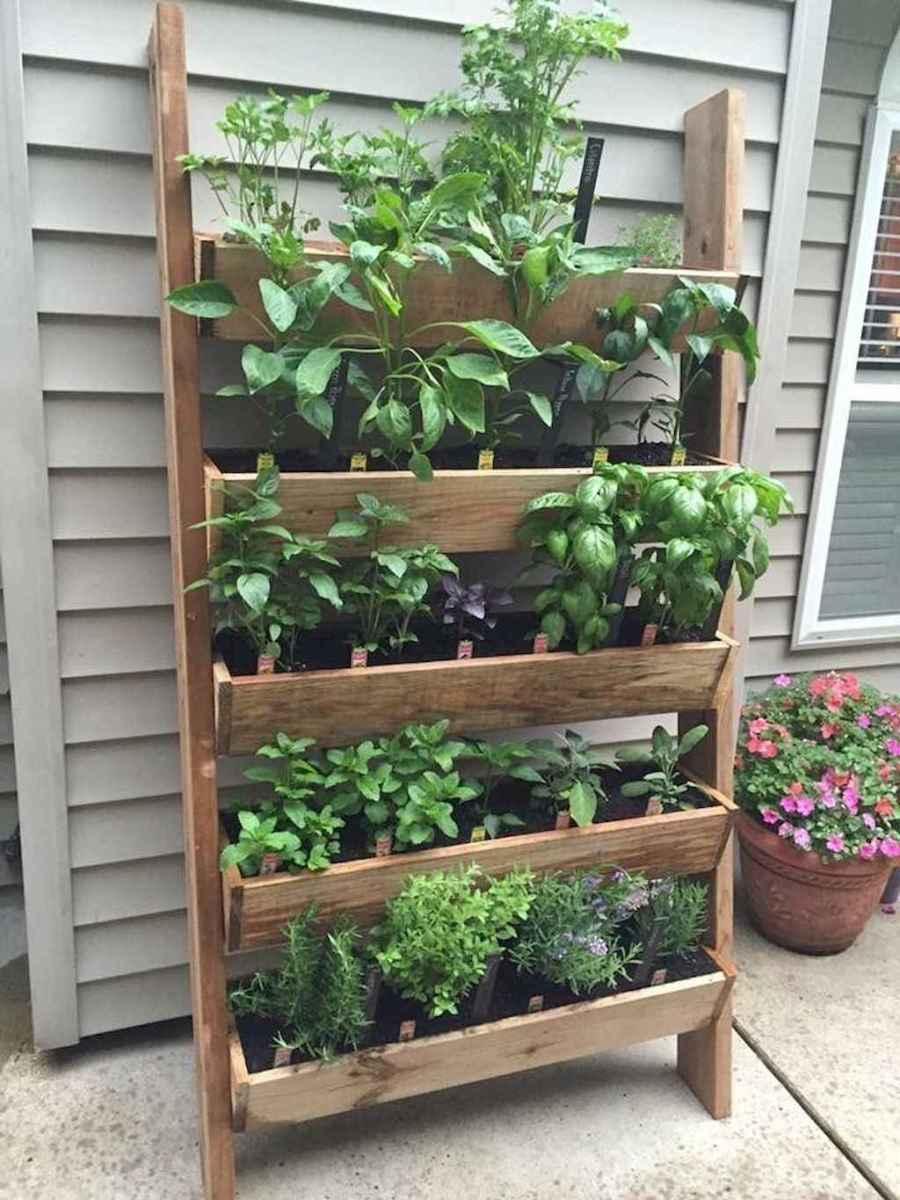 05 stunning vertical garden for wall decor ideas