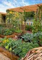 10 affordable backyard vegetable garden design ideas