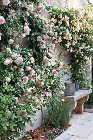 14 beautiful small cottage garden ideas for backyard inspiration