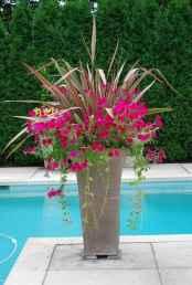 22 fabulous summer container garden flowers ideas