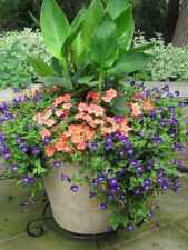 28 fabulous summer container garden flowers ideas