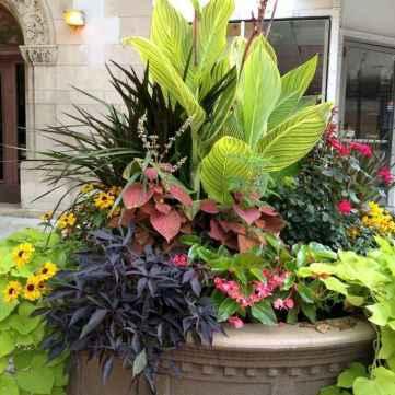 35 fabulous summer container garden flowers ideas