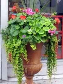 42 fabulous summer container garden flowers ideas