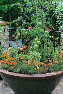 44 fabulous summer container garden flowers ideas