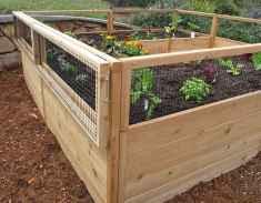 45 affordable backyard vegetable garden design ideas