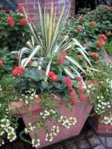 53 fabulous summer container garden flowers ideas