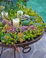 57 affordable backyard vegetable garden design ideas