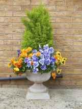 58 fabulous summer container garden flowers ideas