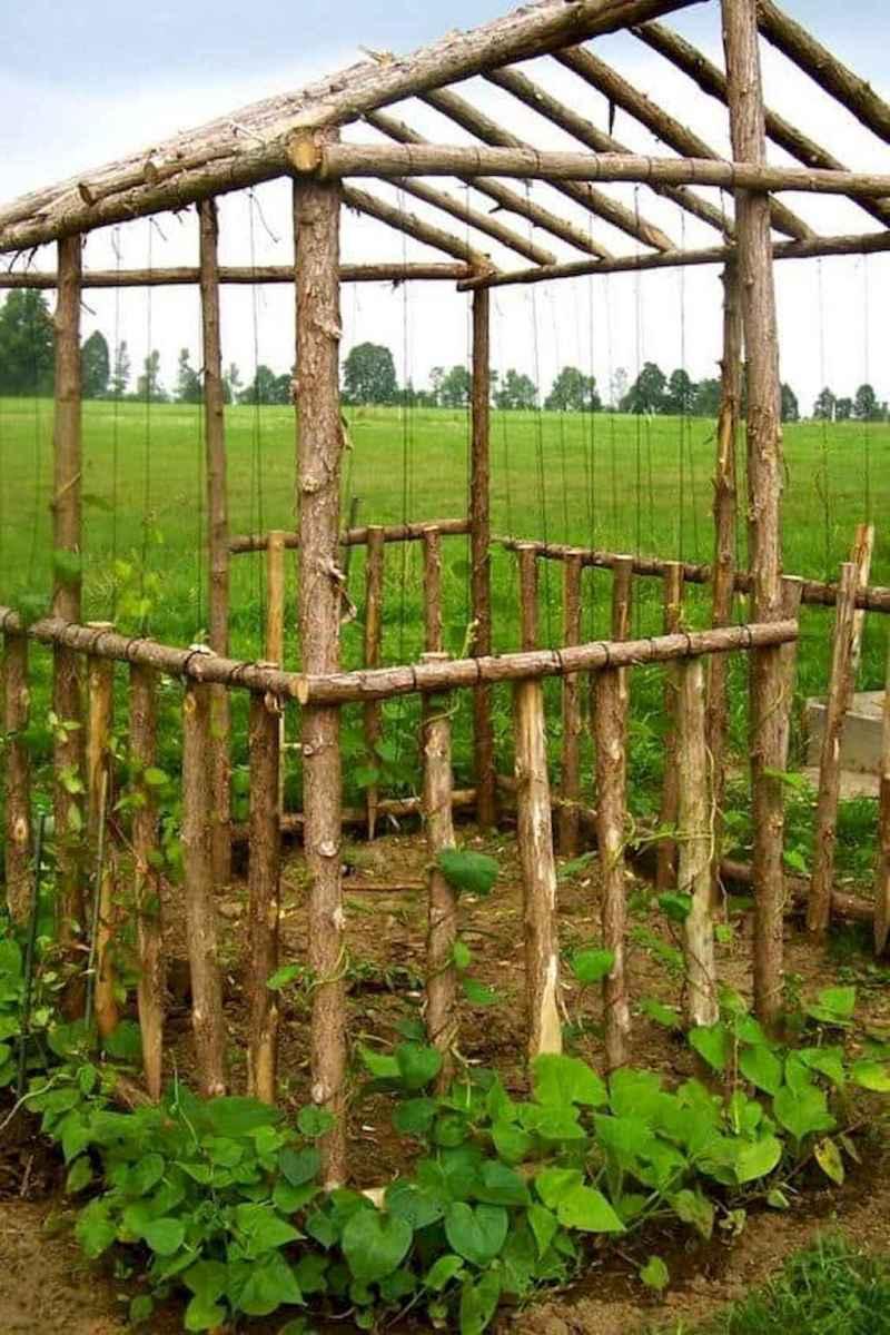 61 amazing diy vertical garden design ideas