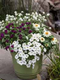 64 fabulous summer container garden flowers ideas