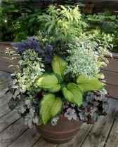 67 fabulous summer container garden flowers ideas