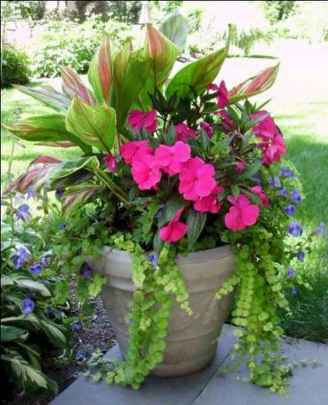 69 fabulous summer container garden flowers ideas