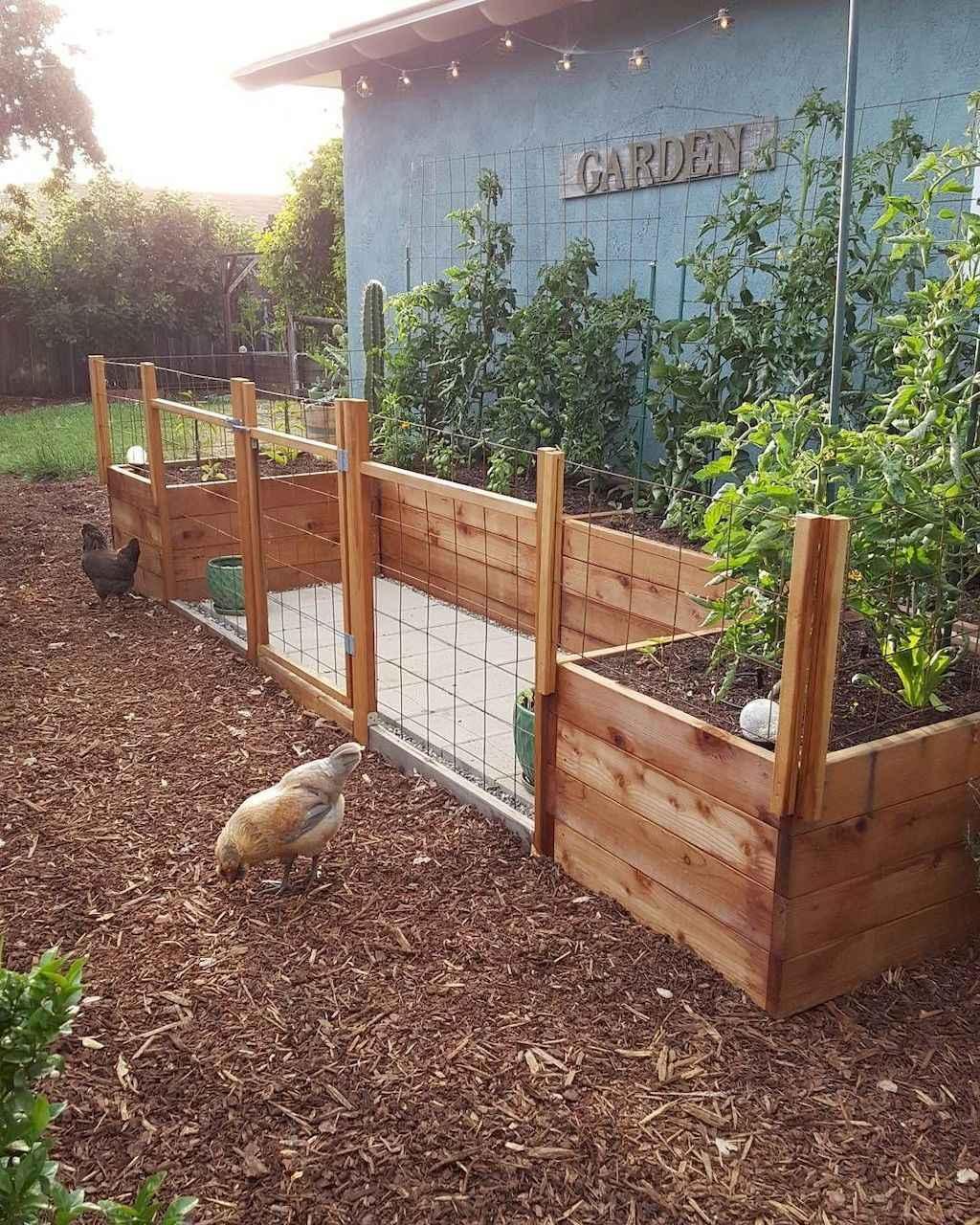 80 Affordable Backyard Vegetable Garden Design Ideas
