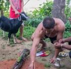 Preparations for Dashain