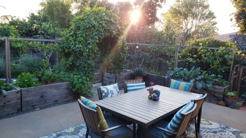 The patio garden, surrounded it with raised beds and trellises, doubling as a enclosure to keep the chickens in the rest of the back yard. There is a large arch, covered in passionfruit vines, leading out to the rest of the back yard. A table sits in the middle of the patio area, with a colorful outdoor rug and striped pillows. The setting sun is beaming through the trees.