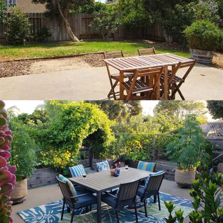 Before and after: A shot from the July 2013 real estate listing for our property, with a plain concrete patio and grassy yard. Bottom: The patio garden in fall of 2018, completely enclosed with raised garden beds, overflowing with plants. The chickens free range the back yard on the other side of the raised beds.