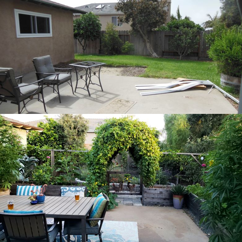 Top: Summer 2013 Bottom: Summer 2018. The passionfruit arch is a focal point, and also excellent privacy feature from the neighbor behind us!