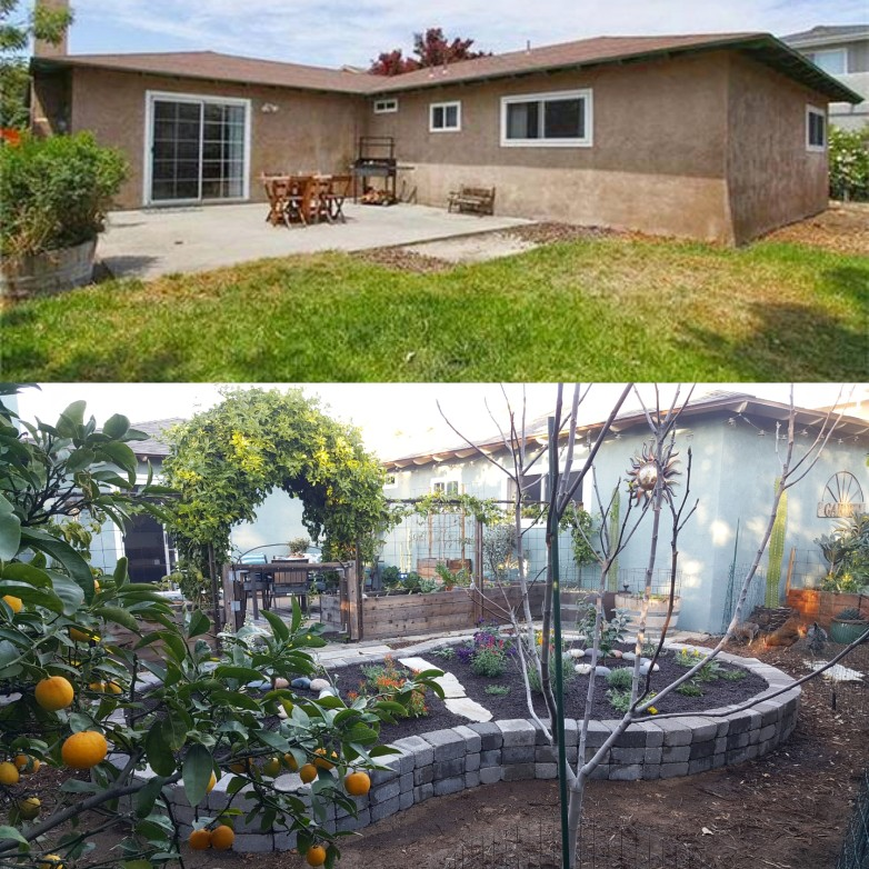 Top half: Another real estate photo from July 2013. Bottom half: February 2018, when we completed the new stone pollinator island. We left this area grass for a long time, for the chickens sake. And then they ate it all. So...