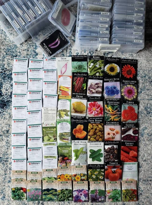 Dozens of seed packets! All non GMO and organic options to grow your own food. Seeds shown include beans, flowers, onion, tomatoes, cucumber, carrots, basil, and dozens of other herbs, companion plants, and veggies