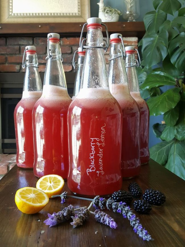 Bottles of homemade kombucha, using lavender and lemons from the garden, and local organic berries to flavor it. The fresh berries, cut lemon, and lavender buds sit on the table around the base of the large red bottles.