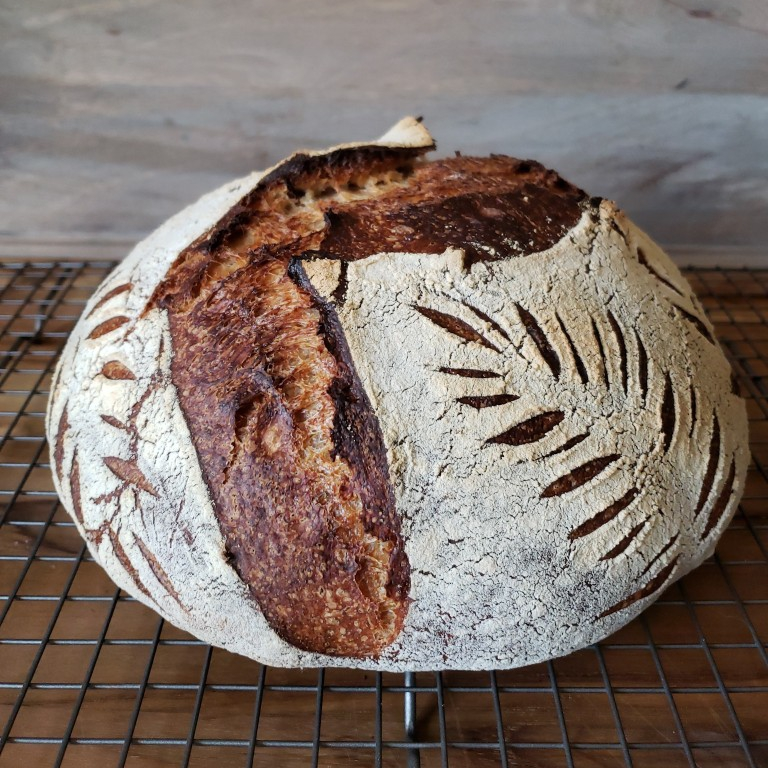 The now baked sourdough loaf, fresh out of the oven. It is now sitting on a cooling rack.