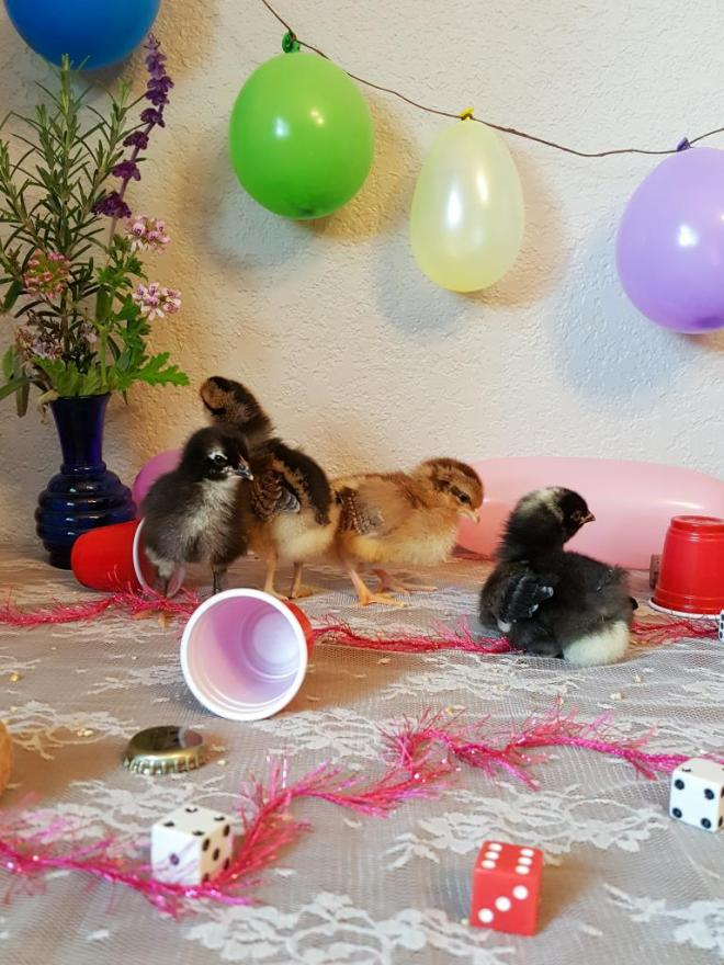 Four chicks are sitting on top of a lace-covered dresser. There are mini red cups, dice, streamers, beer caps, and food bits spread about and knocked over. Balloons hang in the background.