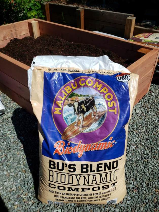 A photo of a bag of compost, by Malibu Compost. It is sitting on the gravel, leaning up against a half-filled raised bed behind it.