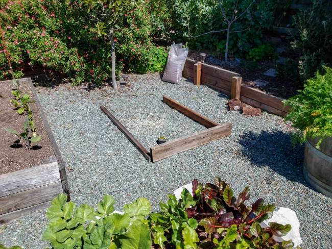 A few random boards lay in an open space in the gravel in a front yard garden, marking out where the future raised bed will go.