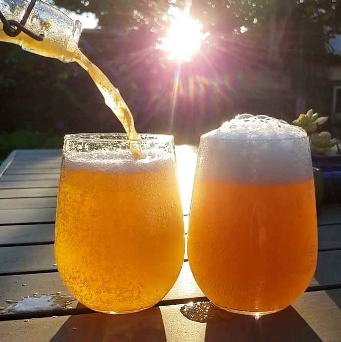An image of two stemless wineglasses on a table, full of kombucha. The sun is the background lighting up the glasses of golden liquid. A bottle hovers over one glass, still pouring out the rest of the kombucha. Little carbonation bubbles are formed inside the glasses, and a light foamy head has formed.